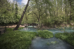 Cyan Springs (Icker_Malabares) Tags: lavino sorgentidellavino sorgentisulfuree pescara abruzzo cyansprings water nature forest wood landscape color cyan green thediary