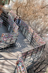 Love Bridge - N Tower (cattan2011) Tags: trees tree lovelocks bridge locks streetpicture streetphoto streetphotography streetart korea southkorea travelbloggers traveltuesday travelphotography travel landscapeportrait landscapephotography landscape