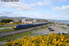 216 outside Wicklow, 15/4/17 (hurricanemk1c) Tags: railways railway train trains irish rail irishrail iarnród éireann iarnródéireann 2017 belmond grandhibernian luxurytrain generalmotors gm emd 201 216 0945inchicoregorey testrun