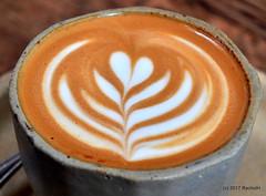 DSC_0976 (RachidH) Tags: cappuccino latte art cappuccinoart coffee themill divisadero sf sanfrancisco california ca rachidh greco