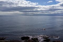 sun sparkled sea (Rourkeor) Tags: ardrossan ayrshire scotland unitedkingdom gb coast sunshine glistening reflections artistic rocks island horizon clouds yacht tranquil calm sea seaside blue sony sonyrx1r rx1r fullframe carlzeiss zeiss sonnar t 35mm