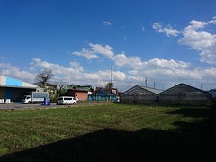 A sunny and windy day (rawiinyo) Tags: suburb 郊外 yashio 八潮 saitama 埼玉
