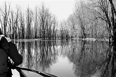 Jock River In Monochrome…. (deanspic) Tags: noir bw monochrome richmondfen fen photopaddle canoe canoeing paddle paddling spring wetland forest flooded floodedforest water river jockriver byfilter cpl g3x vfmc maple silvermaple trees flood rest resting sublime serene calm tranquility tranquil