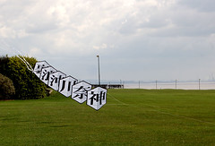 Rokaku Kite Train. Incidently , this may well be my final pic on Flickr. I have had enough of them changing the format. (Otty Flyer.) Tags: liverpool kites len merseyside otterspool royles