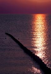 Versteckspiel - hide and seek (Manuela Salzinger) Tags: sunset sea water spring meer wasser waves sonnenuntergang balticsea rgen ostsee frhling wellen