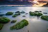 Sant'Elia (MrPalmeras!) Tags: sardegna sunset italy praia strand italia tramonto sardinia fullframe sardinien paesaggio sardaigne cerdeña ranta 意大利 hondartza イタリア santelia plaża пляж plazhi plaža sardynia trá sardenha sardinië ströndinni сардиния sardiniya sal1635z سردينيا サルディニア nicolapaba çimərlik tsairdín carlzeissvariosonnart1635mmf28ssm sardenja