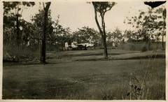 RAAF B-25 Mitchell bombers (Adelaide Archivist) Tags: wwii bomber liberator raaf b24