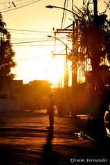 Flickr Efraim Fernandes_0041 (efraim.fernandes) Tags: street sunset shadow urban sun streets sol childhood silhouette kids contraluz kid loneliness shadows sombra prdosol urbano highkey rua criana crianas sombras sunnyday infncia solido urbanlandscape ruas silhueta paisagemurbana diadesol diaensolarado altasluzes
