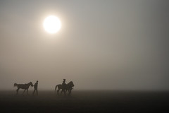 The Trek (BoXed_FisH) Tags: morning people horse sun mist silhouette fog sunrise indonesia landscape volcano java sand day sony clear bromo seaofsand sonya7