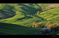 Maremma nascosta - Hidden Maremma (Jambo Jambo) Tags: sunset italy panorama landscape countryside italia tramonto hills campagna tuscany toscana grosseto colline maremma cinigiano nikonflickraward nikonflickrawardgold nikond5000 jambojambo