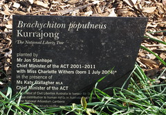 IMG_9774 (spelio) Tags: trees plants may australia arboretum national bonsai canberra care act 2014 australiancapitalterritory bansai 2013 arbortum