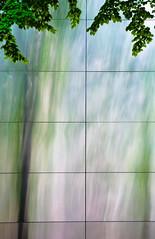 Trees & Metal Shadow Streaks (Orbmiser) Tags: tree metal wall oregon portland spring nikon shiny shadows streaks d90 55200vr