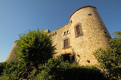 Roure Castle (Romain Boulle) Tags: france castle ardèche roure