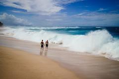 Surfers at the North Shore, Hawaii