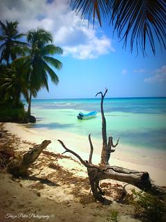 Isla Saona Caribbean