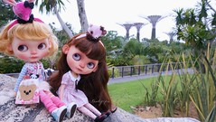 The sisters had a wonderful time at the Gardens by the Bay