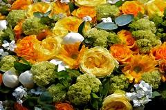 JKN©-14-N70_4594 (John Nakata) Tags: abstract awb bw15 columbarium flickrabstract flowers france lecimetièredupèrelachaise paris pèrelachaisecemetery