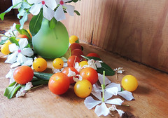 periwinkle and cherry tomatoes (Ani Carrington) Tags: red stilllife colors vegetables yellow colours tabletop