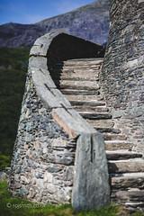 Dolbadarn Steps (Roj) Tags: uk wales steps llanberis shallowdof 13thcentury dolbadarncastle canon5dmkii llywelynapiorwerth sigma85mmf14exdghsm photographersontumblr