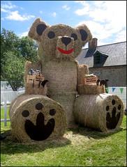 Straw bear (catb -) Tags: ireland dublin ixus fa fingal