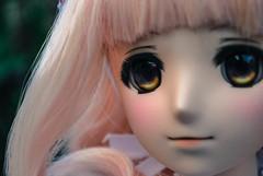 Fun photo shots (WonderNo08) Tags: garden momo dolls bjd volks dds 2014 dollfiedream dollifedreamsister