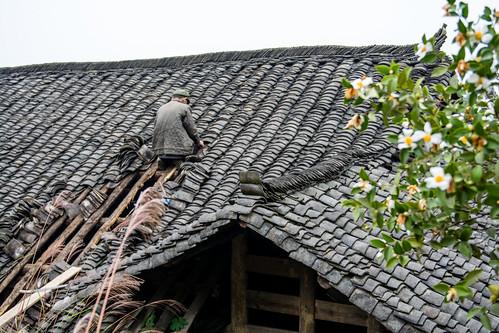 Hunan - Furong