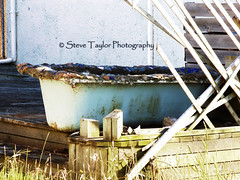 Relax in a Therapeutic Mud Bath (Steve Taylor (Photography)) Tags: wood broken grass bath rust mud trellis deck yuck mold slime drainpipe gooey viscous gunge clots