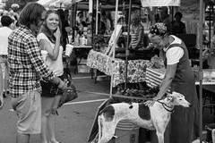 IMG_3830 (joe_jaynes) Tags: woman greyhound man animal puppy farmersmarket strangers streetphotography oldwoman streetpeople