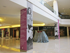 Column Graphic at GlendaleGalleria