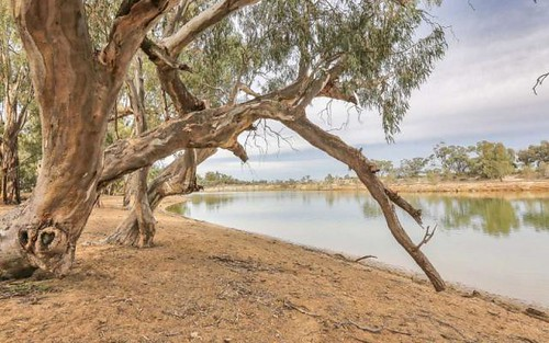 Lot 1221 Boeill Creek Road, Boeill Creek via, Buronga NSW 2739