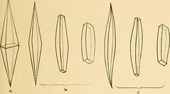 Anglų lietuvių žodynas. Žodis spermatocele reiškia spermatozoidas lietuviškai.