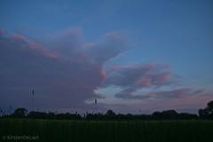 (KirstenDeLaet) Tags: trees light summer sky field rain clouds licht zonsondergang bomen natural pentax wolken zomer gras lucht veld regen k3 2014 natuurlijk sigma1770mmf284 kirstendelaet