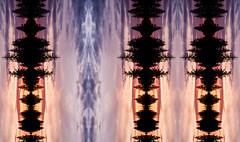Sonic Trees (Ursa Davis) Tags: abstract art artist artwork black blue buy color colorful colors creative davis decor digital direct eclectic fine for home mirror mix modern orange organic pattern photo photographer photography pink purchase purple sale shape silhouette sonic sounds soundwave strange trees unusual ursa ursadavis usa washington wwwursadaviscom yellow