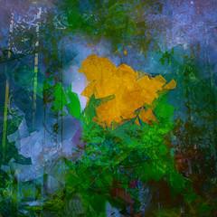 Breakout (Karen Kleis) Tags: arteffects digitalart photomanipulation bloom cubist breakout growth abstract hypothetical sharingart