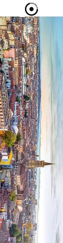 19x5cm // Réf : 12040707 // Toulouse