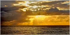 DSC_0424 Bright morning (Rodolfo Frino) Tags: brightday brightsky yellow bright clouds sky sea ocean mar mer cielo ciel waves oceano seascape paisaje paysage landscape photography australia australianseascape sunlight day morning contrast golden air sunshine