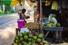 Buko (Coconut), Lanzones, Saging (Banana), and a Smile (ddny2k) Tags: banana laguna philippines lanzones fruitstand sal18250 coconut smile