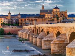 Zoom in (FJcuenca) Tags: cordoba guadalquivir panasoniclumixdmcg6h romanbridge spain andalousie andalousien andalucia andalusia andalusien córdoba espagna espanien españa fjcuenca javiercuencamuñoz mezquitacatedral puenteromano vario14140 andalucía es