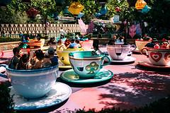 Mad tea party, Disneyland 2017!! (luchador_lb) Tags: disney disneyland tea cup travel canon anaheim california estadosunidos
