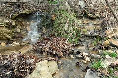20170330-3751-Edit.jpg (jgillmissouri) Tags: pond 3stop oakhollow 2017 landscape march nikond810 jack