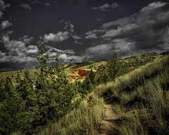 The red hill (Hans Franchesco) Tags: redhill painted hills paintedhills clouds greysky blackandwhitesky mitchell grass scrubland trees highdesert oregon centraloregon johndayfossilbeds red footpath trail hikingtrail desert
