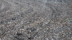 Storms of April 9-10th 2017 (Dan's Storm Photos & Photography) Tags: thunderstorm thunderstorms thunderhead thunderstormbase thundershower thunderheads towers clouds cumulonimbus convection cumulus cloud crepuscular crepuscularrays cumulusclouds skyscape skyscapes sky shelfcloud storms weather nature landscape landscapes updraft updrafts hail hailshaft