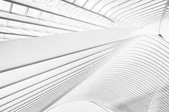 its complicated (Giles McGarry (formerly kantryla)) Tags: interior interiorarchitecture calatrava santiagocalatrava liege liègeguilleminsrailwaystation belgium highkey white morewhitethanblack structure