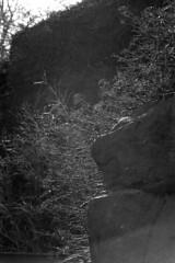 2017-April-4th_Suomenlinna_EOS-Jupiter37A_008 (Tatu Korhonen) Tags: suomenlinna sveaborg helsinki finland jupiter37a 35135mm canoneos500n apx400 adoxatomal49