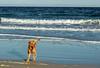 Stornoway Feb-17-2563 (MilkWoodPhotography) Tags: stornoway isleoflewis isleofharris outerhebrides scotland ullapool butt lewis beach minch
