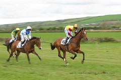 Point to point Lydstep (welshmanwandering1) Tags: horses horseracing pointtopoint pembrokeshire lydstep southpembrokeshirehunt steeplechase wales galloping west