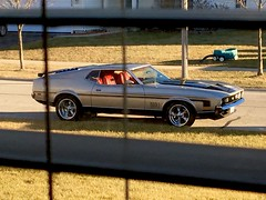Looking out the window trying to hurry up and finish my chores so I can ride!!! (Stu Bo) Tags: car window chores isitreallyspring mustang