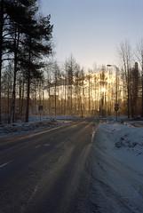 n07660628a (leevil2010) Tags: kodakektar100 olympus35sp oulu pacificimageprimefilmxe vuosi northernostrobothnia finland fi