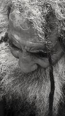(Aaron Montilla) Tags: aaronmontilla 2017 blackwhite blancoynegro bw byn portrait retrato male masculino elderman anciano homeless face rostro hair pelo streetphotography fotografiacallejera fotodecalle internationalflickrawards
