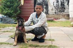 Duo (Rushay) Tags: 50mm african alsatian dog easterncape germanshepherd nikond810 portelizabeth portrait pup puppy southafrica southafrican